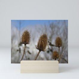 Winter Teasels Mini Art Print