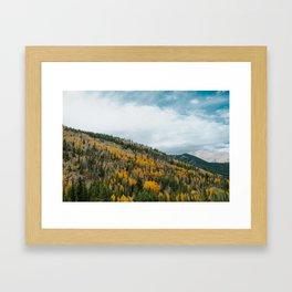 GOLD DUST Framed Art Print
