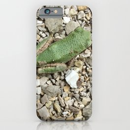 Green tree frog iPhone Case