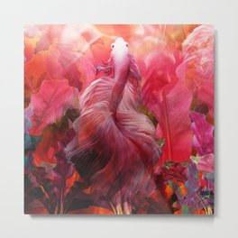"""Betta splendens Tropical Dream (Siam fighter)"" Metal Print"