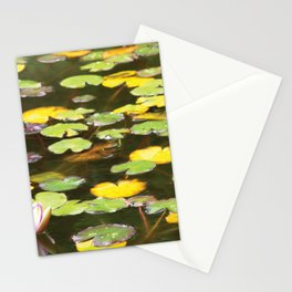 Pond flower Stationery Cards