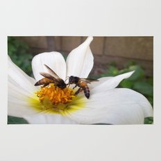 Bees at Work Rug
