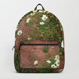 Forestry Backpack