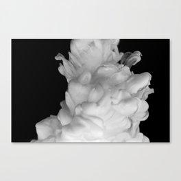 Plume on Black Canvas Print