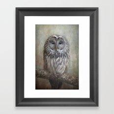 Ural Owl ( Grey owl ) Framed Art Print