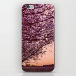 Purple Tree, Coral Orange Sky iPhone Skin