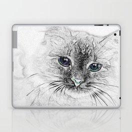 Siberian Kitty Cat Laying on the Marble Slab Laptop & iPad Skin