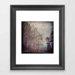 8852 Framed Art Print