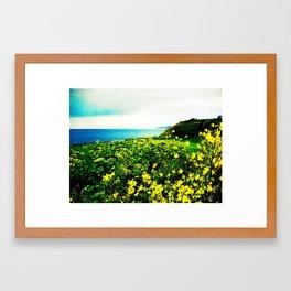 Island Spring Framed Art Print