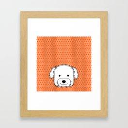 Havanese dog Framed Art Print