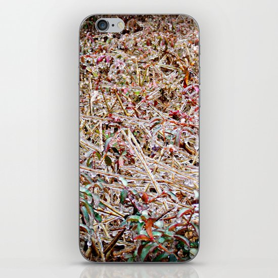 Iced Over iPhone & iPod Skin