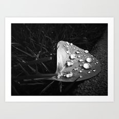 Tiny Jewels Art Print