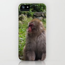 A Forlorn Summer Day iPhone Case