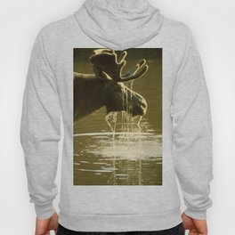 Moose Dipping His Head Into Water Hoody