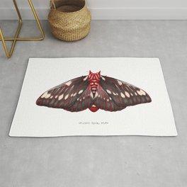 Splendid Royal Moth (Citheronia splendens) Rug