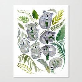 Koala Leef Canvas Print