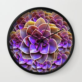 PURPLE-CREAM SUCCULENT ROSETTES Wall Clock