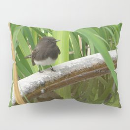 Black Phoebe at the Fountain Pillow Sham