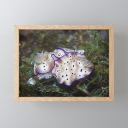 69ing nudis Framed Mini Art Print