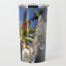 Cherry Blossom In Spring Sunlight Travel Mug