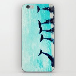 Spectacular Dolphin Show iPhone Skin