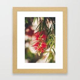 May flowers I Framed Art Print