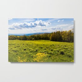 A View of the Blue Ridge Mountains from Shenandoah National Park Metal Print