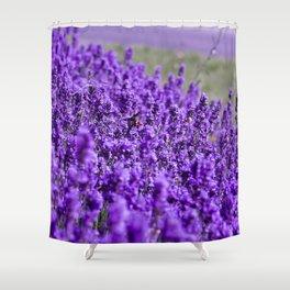 Lavandula Shower Curtain
