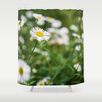 daisies Shower Curtains featuring Daisies by Michelle McConnell