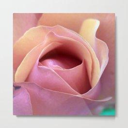 bed of roses: coral Metal Print