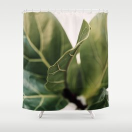 Thin Lines Shower Curtain