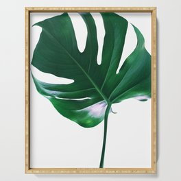 Tropical Monstera Delight #1 #tropical #decor #art #society6 Serving Tray