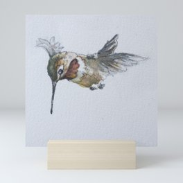 Rufous or Allen's Hummingbird Mini Art Print