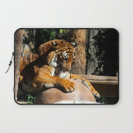 The Tiger Triumphant Laptop Sleeve