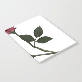 Mystical Maroon Rose Notebook