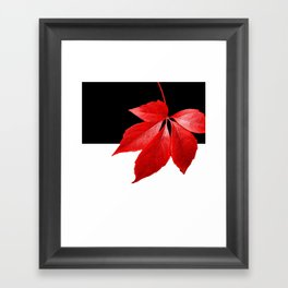 Red Leaf With Black & White Framed Art Print