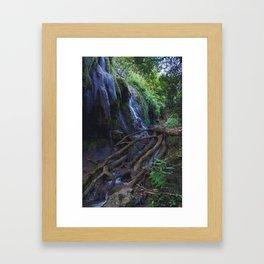 gorman falls Framed Art Print