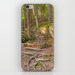 Green Mountain Forest Trail iPhone Skin