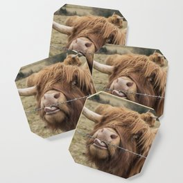 Scottish Highland cow Coaster