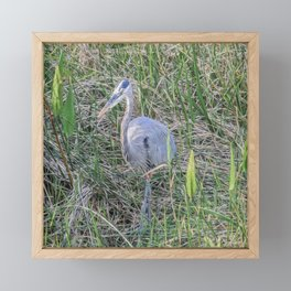 Hello Blue Heron Framed Mini Art Print