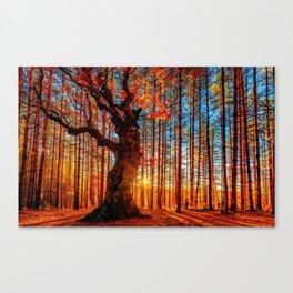 Majestic woods Canvas Print