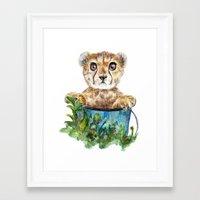 cheetah Framed Art Prints featuring cheetah by Anna Shell