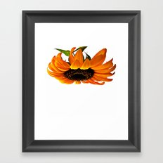 FLOWER 032 Framed Art Print
