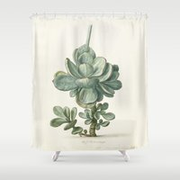 succulent Shower Curtains featuring Succulent by anipani