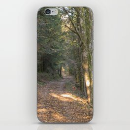 French forest road iPhone Skin