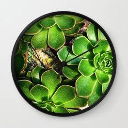 3 Succulents Wall Clock