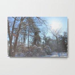 Winter in Maryland Metal Print