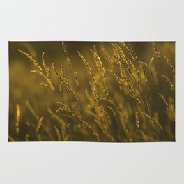 meadow in sunset Rug