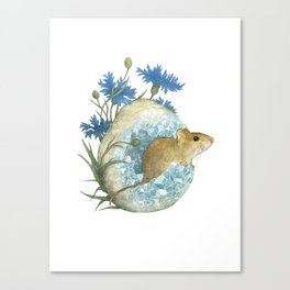 Field Mouse and Celestite Geode Canvas Print