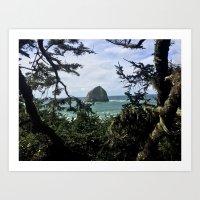 Natural Frame Art Print
